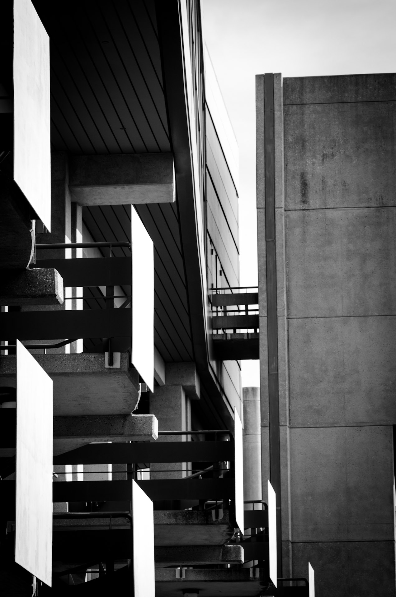 Architecture Black Amp White Tall Hippo